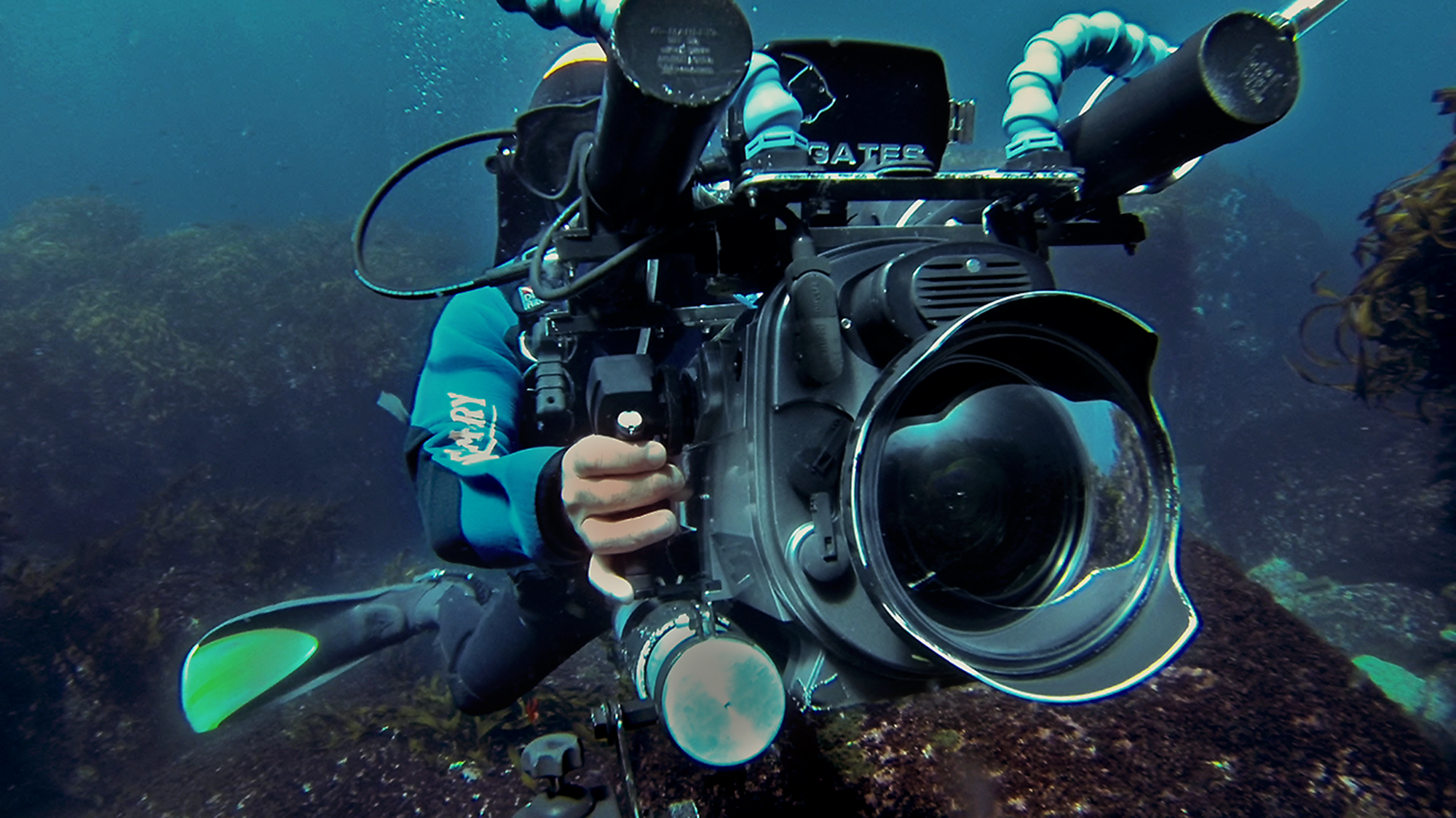 Dave Abbott on winter underwater shoot, NZ, Liquid Action films