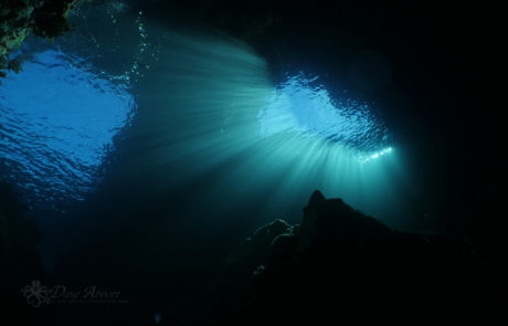 Beautiful light rays in a shadowy underwater arch, © Dave Abbott, Liquid Action films