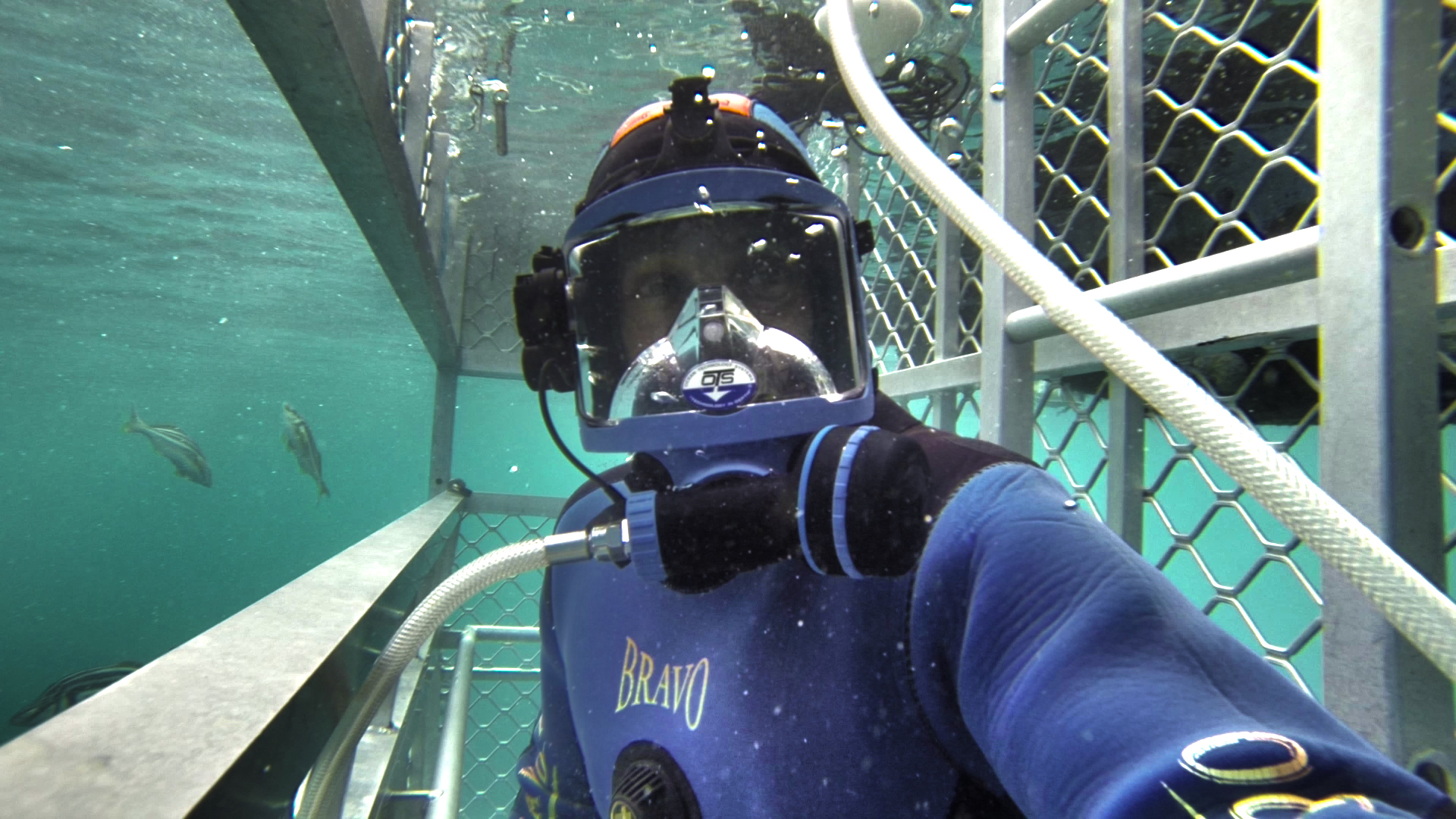 Dave Abbott in shark cage using surface supply and underwater comms while filming great whites